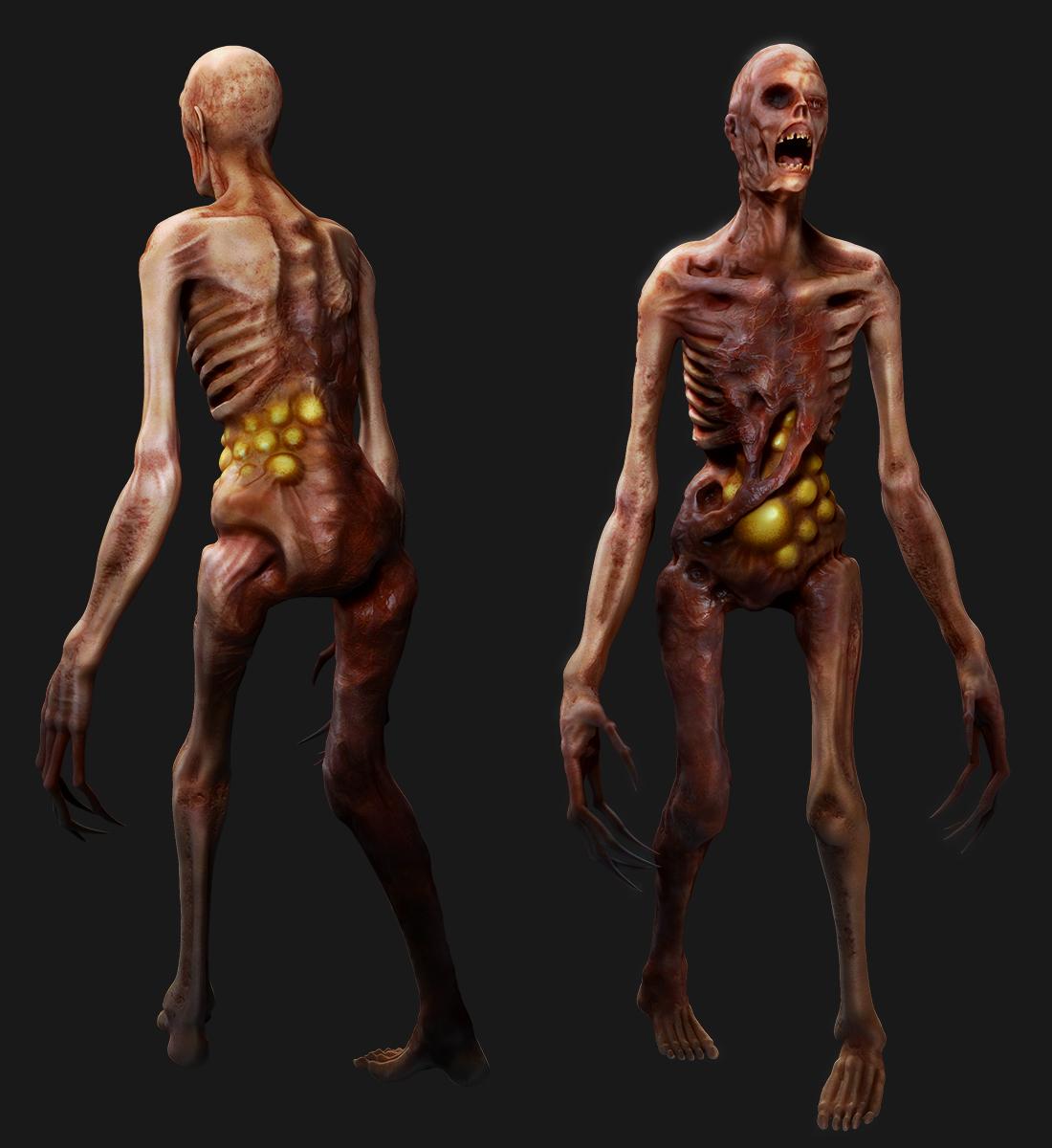 skeletal_concept